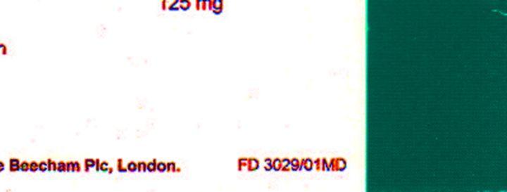 augmentin et chlamydia